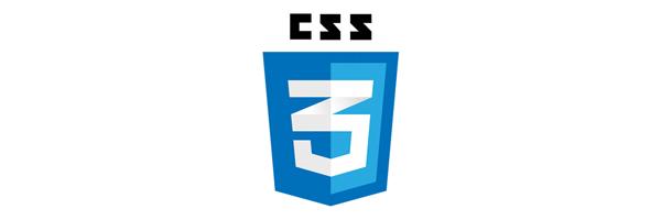technology-css3_logo